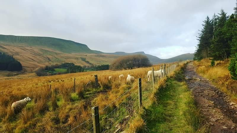 Roman road across the Neuadd Valley with views of ridges and peaks