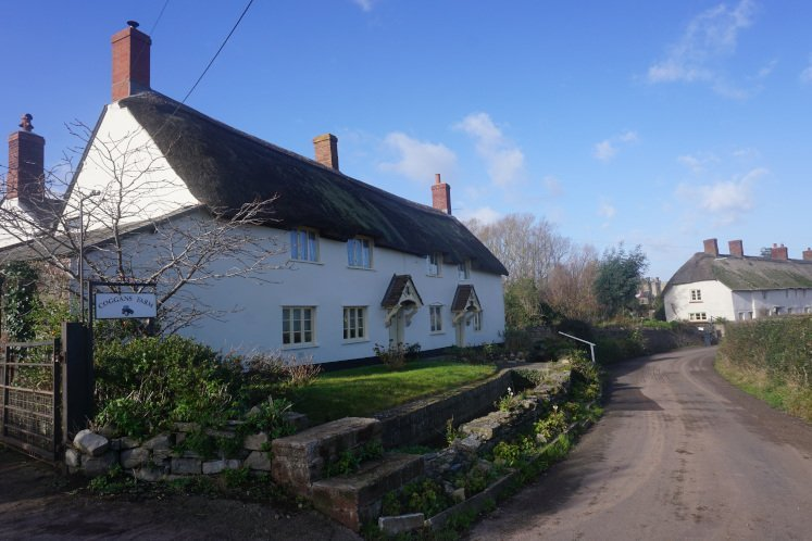 Lovely thatched cottages in quaint village of East Quantoxhead