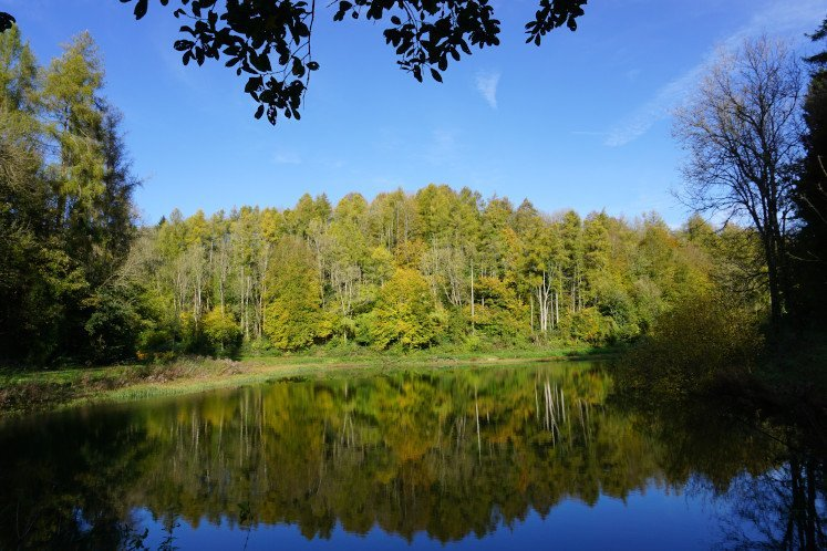 Colourful trees and a gleaming lake in Ozleworth Bottom in the Cotswolds
