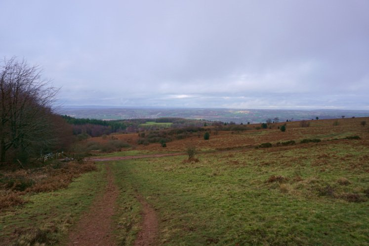 Views of the wood of Rowberrow Warren, the Somerset Levels and the Bristol Channel from Black Down