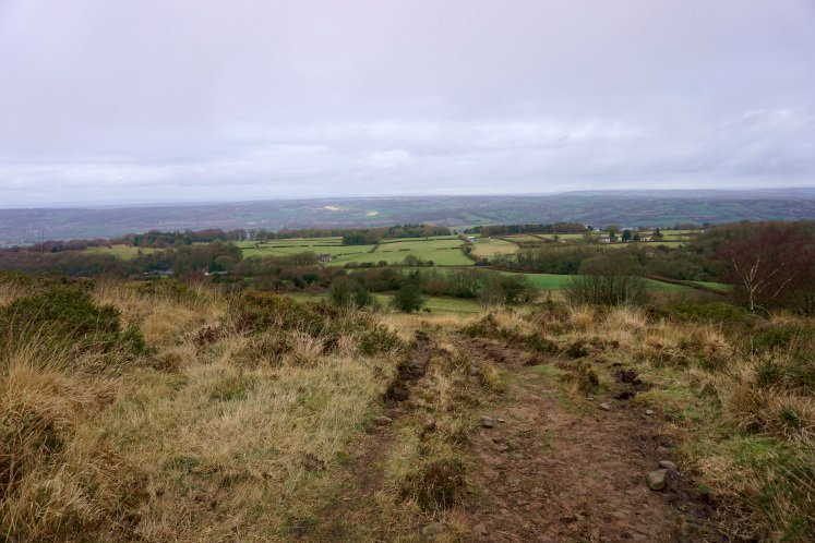 Walking up the hill of Black Down with views of the Mendip Hills and the Somerset Levels